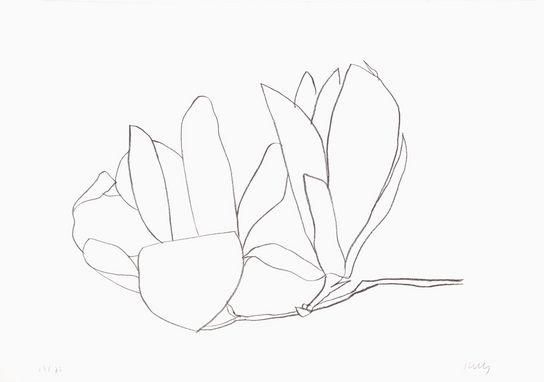 ellsworth-kelly-magnolia-1966