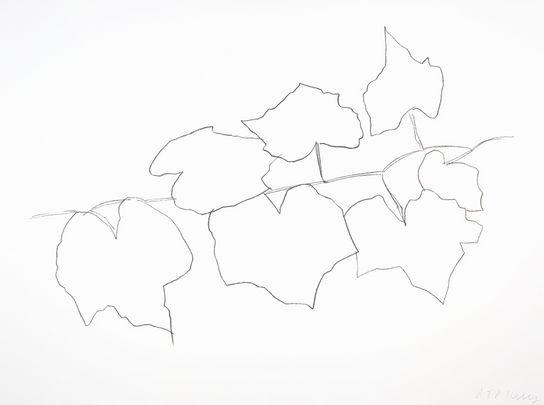ellsworth-kelly-wild-grape-leaves-ii-2004