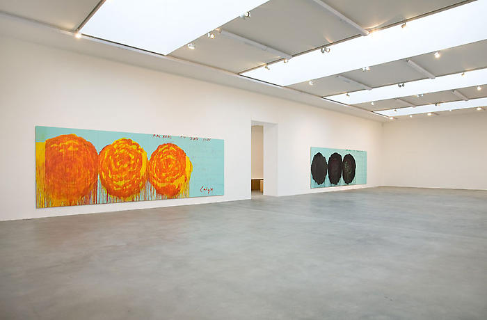 Cy Twombly-The Rose-Installation View
