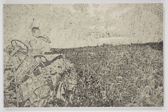 maccarone-gallery-nate-lowman-farmer
