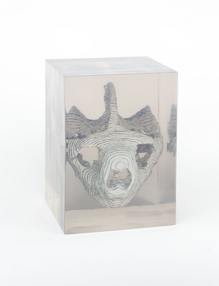 dustin_yellin-galapagos_tortoise-13x18x15-2009