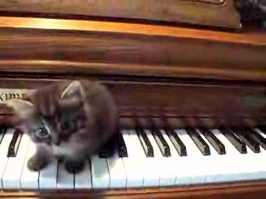 Cory Arcangel - Drei Klavierstücke, op. 11