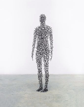 antony gormley domain