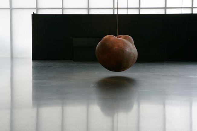 Antony Gormley Kunsthaus Bregenz