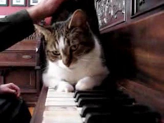 Cory Arcangel - Drei Klavierstücke, op. 11 (2)