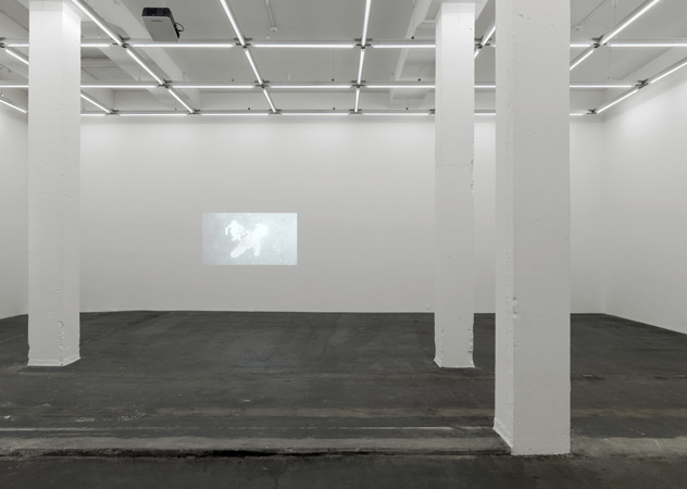 Exhibition View at Gallery Eva Presenhuber Video by Fischli and Weiss