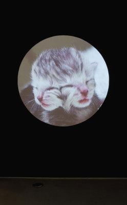 Jon Routson - Spinners 2