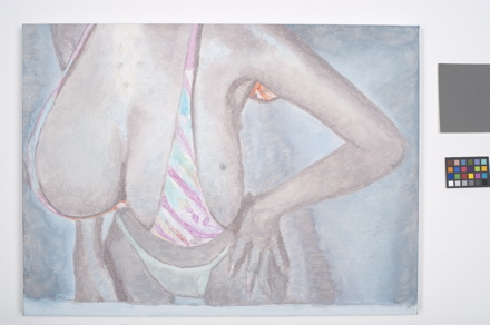Tits, luc tuymans, against the day, wiels