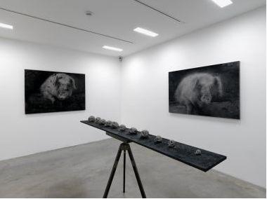 Installation view Zhu Gangqiang