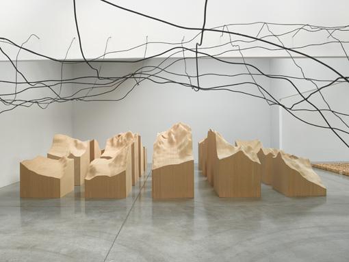 Maya Lin- Three Ways of Looking at the Earth2
