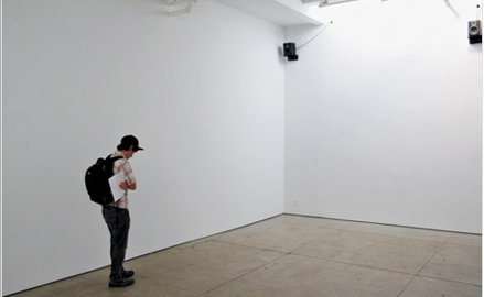 audio show friedrich petzel gallery