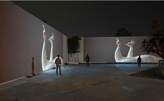 Doug Aitken  - Migration