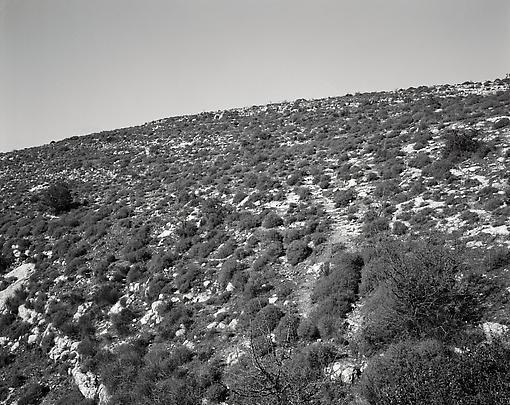 Jeff Wall - Marian Goodman - Hillside in Sicily