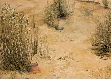 Gonzalez, Detail View, 2009, by Cathy Carver Via Dia Art