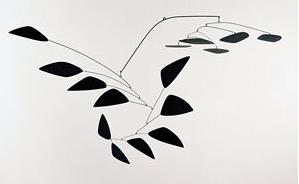 The Y Retrospective Rome Calder