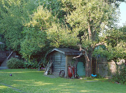 "Jeff Wall ""Boy Falls From Tree"""