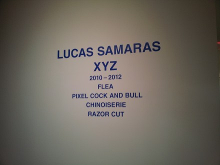 Lucas Samaras XYZ at Pace Gallery