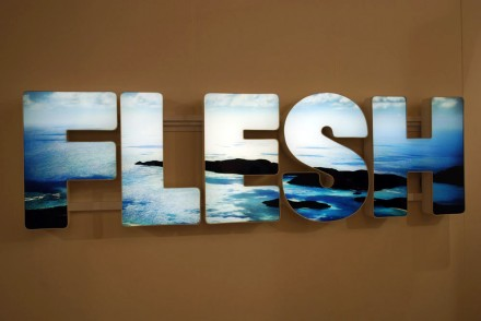 Regen Projects, Doug Aitken, Flesh (2012)