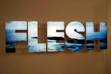 Regen Projects, Doug Aitken, Flesh (2012)