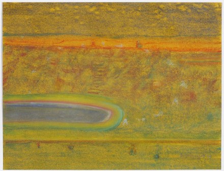 Richard Artschwager Landscape with Pond 2011