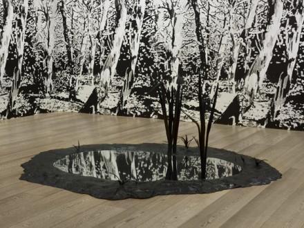 Angus Fairhurst Untouched (2004), via Sadie Coles HQ