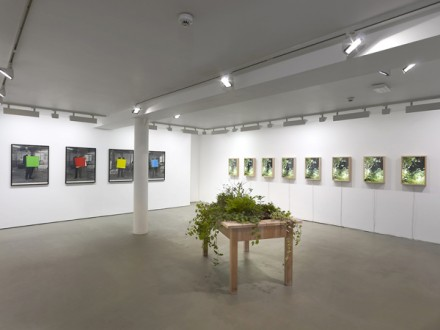 Angus Fairhurst, Un-titled (Installation View) via Sadie Coles HQ