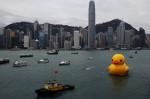 Florentijn Hofman's Rubber Duck in Hong Kong, via Wall Street Journal