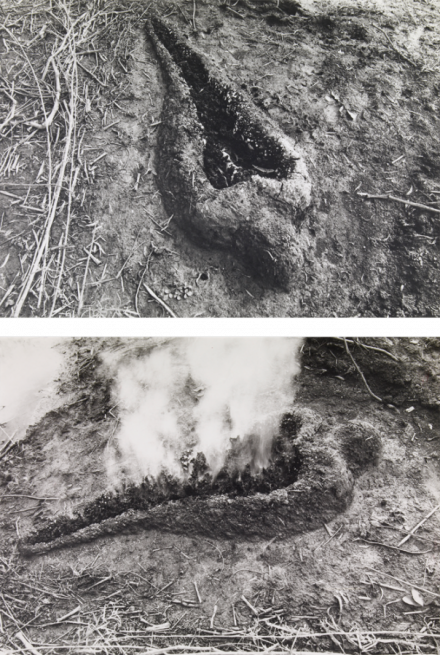 Ana Mendieta, Untitled (Silueta Series) (1980), via Galerie Lelong