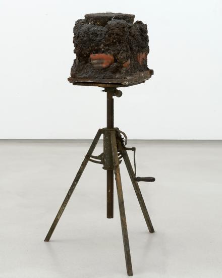 Joseph Beuys, Bothia Felix, (1982), Courtesy Thaddeus Ropac