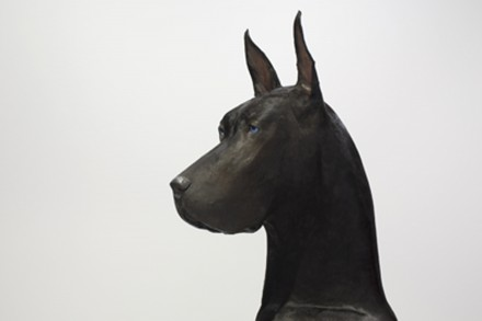 Peter Coffin, Untitled (Dog) (detail), (2012),  Courtesy Hirshhorn Museum.