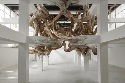 """Henrique Oliveira, """"Baitogogo"""" (2013), courtesy André Morin, Palais de Tokyo"""