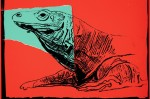 """""""Komodo Monitor"""" (1986) from the Vanishing Animals series by Andy Warhol, via Bloomberg"""