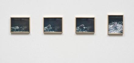 Elad Lassry, Porpoise (2013), via 303 Gallery