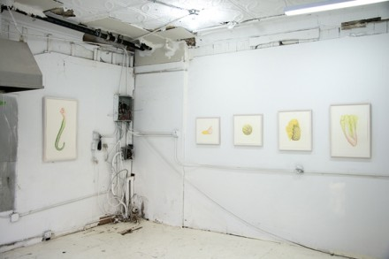 Aurel Schmidt, Fruits (Installation View), via Opening Ceremony