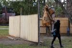 """""""Bear Attacks Man"""" behind its Enclosure, via New York Times"""
