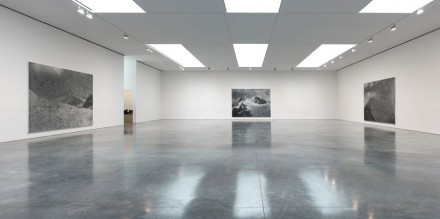 Rudolf Stingel (Installation View)