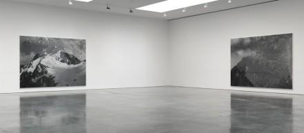 Rudolf Stingel (Installation View)
