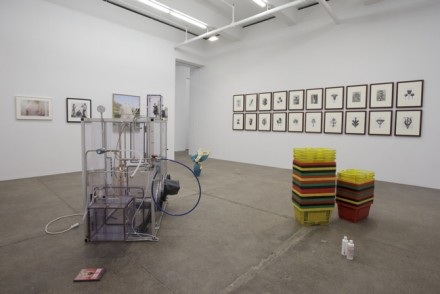 Darren Bader (Installation View)