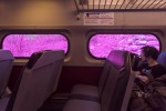 Katharina Grosse on Amtrak, via WSJ