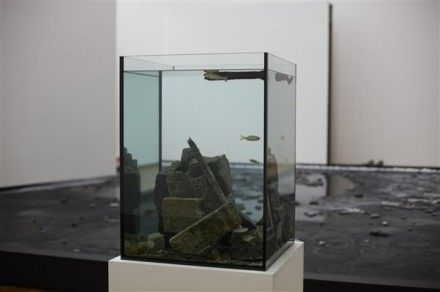 Pierre Huyghe, Untitled (Made Ecosystem Centre Pompidou) 2013, Museum Ludwig