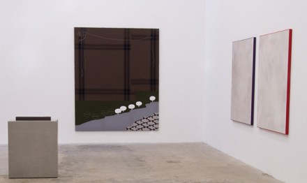 The Husk (Installation View)