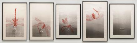 Zhang Huan, Dragonfly (2006), via Pace