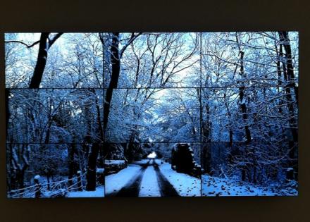 David Hockney, Woldgate Woods, November 26th (2010), via Art Observed