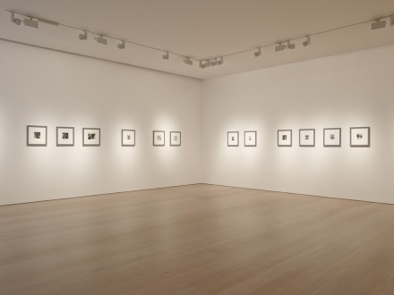 Francesca Woodman, Zigzag (Installation View)