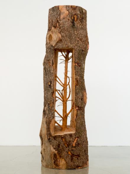Giuseppe Penone, Albero porta—cedro / Door Tree—Cedar (2012), © Giuseppe Penone. Courtesy Archivio Giuseppe Penone. Photography by Josh White/JWPictures.com