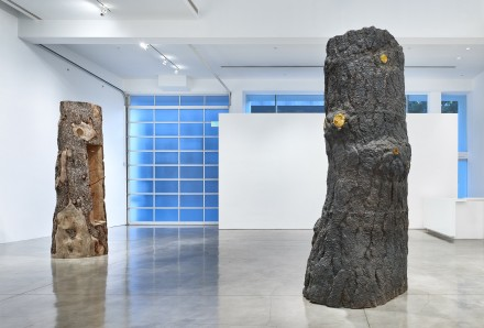 Giuseppe Penone, Branches of Thought (Installation View) © Giuseppe Penone. Courtesy of the artist and Gagosian Gallery. Photography by Douglas M. Parker Studio