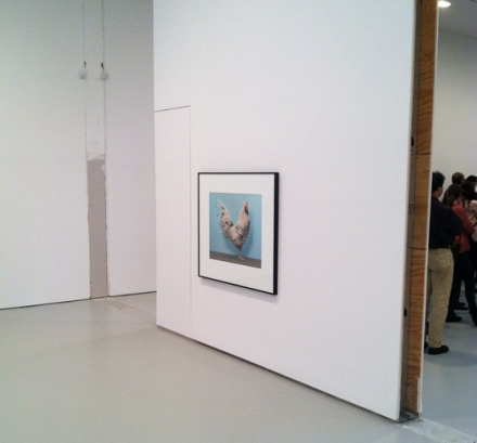 Christopher Williams, For Example: Dix-Huit Leçons Sur La Société Industrielle (Revision 19) (Installation View), via Art Observed