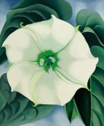 George O'Keefe, Jimson Weed, via The Guardian