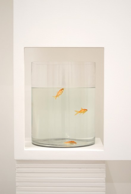 "Claude Rutault, ""goldfish go painting"" (2005), via Art Observed"
