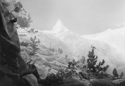 Hiroshi Sugimoto, Birds of the Alps (2012), via Pace London